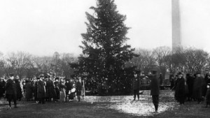 national-christmas-tree-e1324382676244